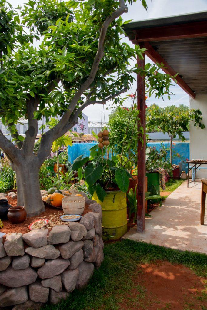 Colourful Garden Landscape CAMFED Chelsea 2019