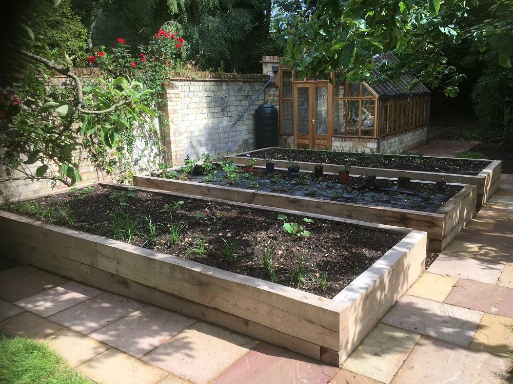 raised beds and greenhouse